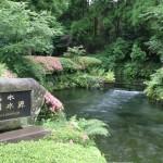 IMG_7660白川水源